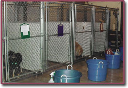 Inside Kennel